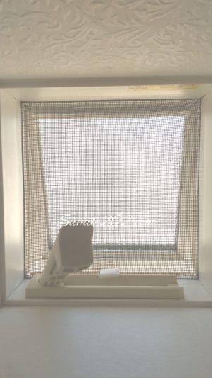 はめ込み網戸の外し方 洗い方 小窓 網戸掃除